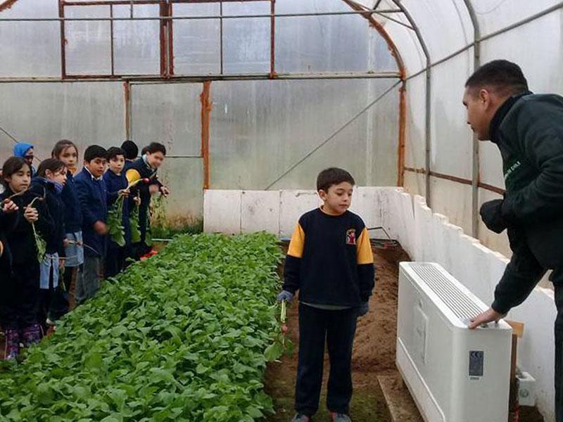 invernadero colegio santa teresa de los andes - puerto aysén